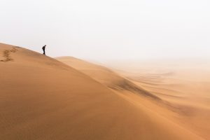 Dune dans la brume